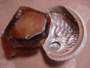 20070914kaiya01