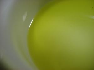 20080302olive01
