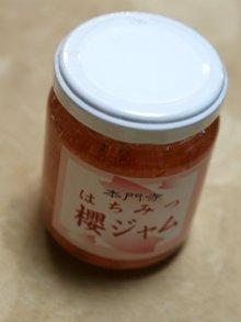 20090403sakura01_2